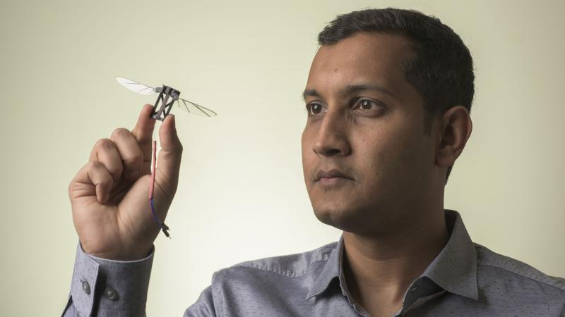 Dr Sridhar Ravi is the leader of new research into bumblebee flight, which he says offers a few lesson for next-generation drones