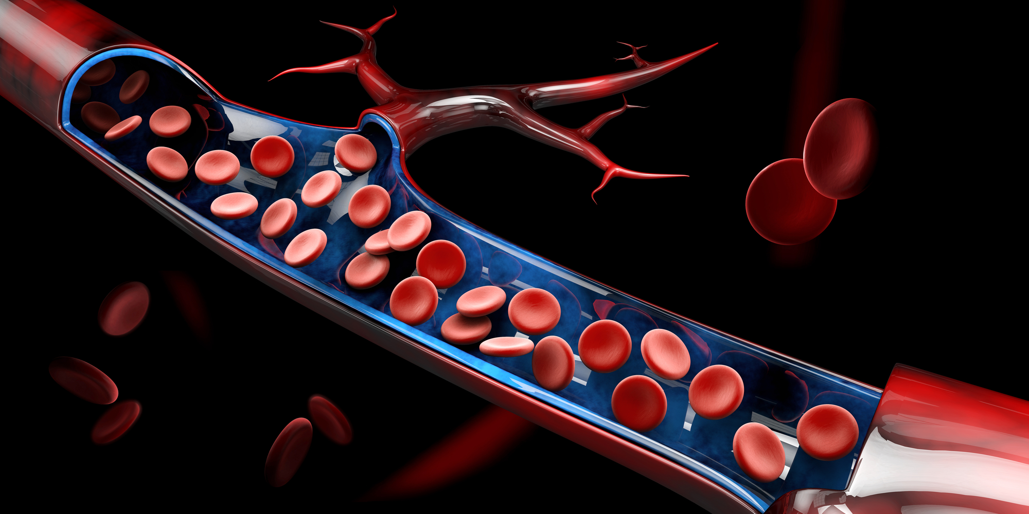 Unexpected new component discovered circulating in bloodstream