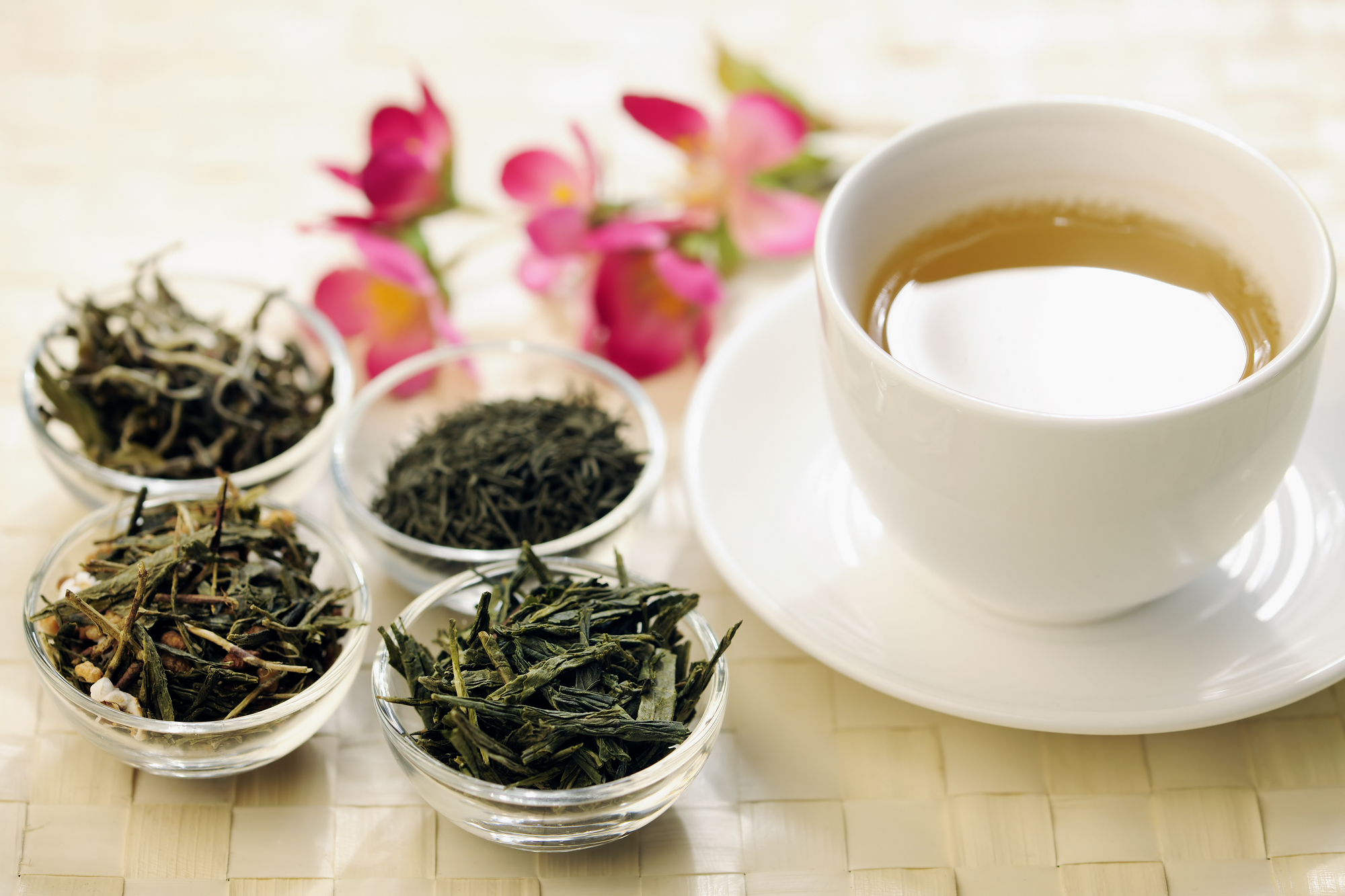 Green tea compound helps antibiotic kill resistant bacteria