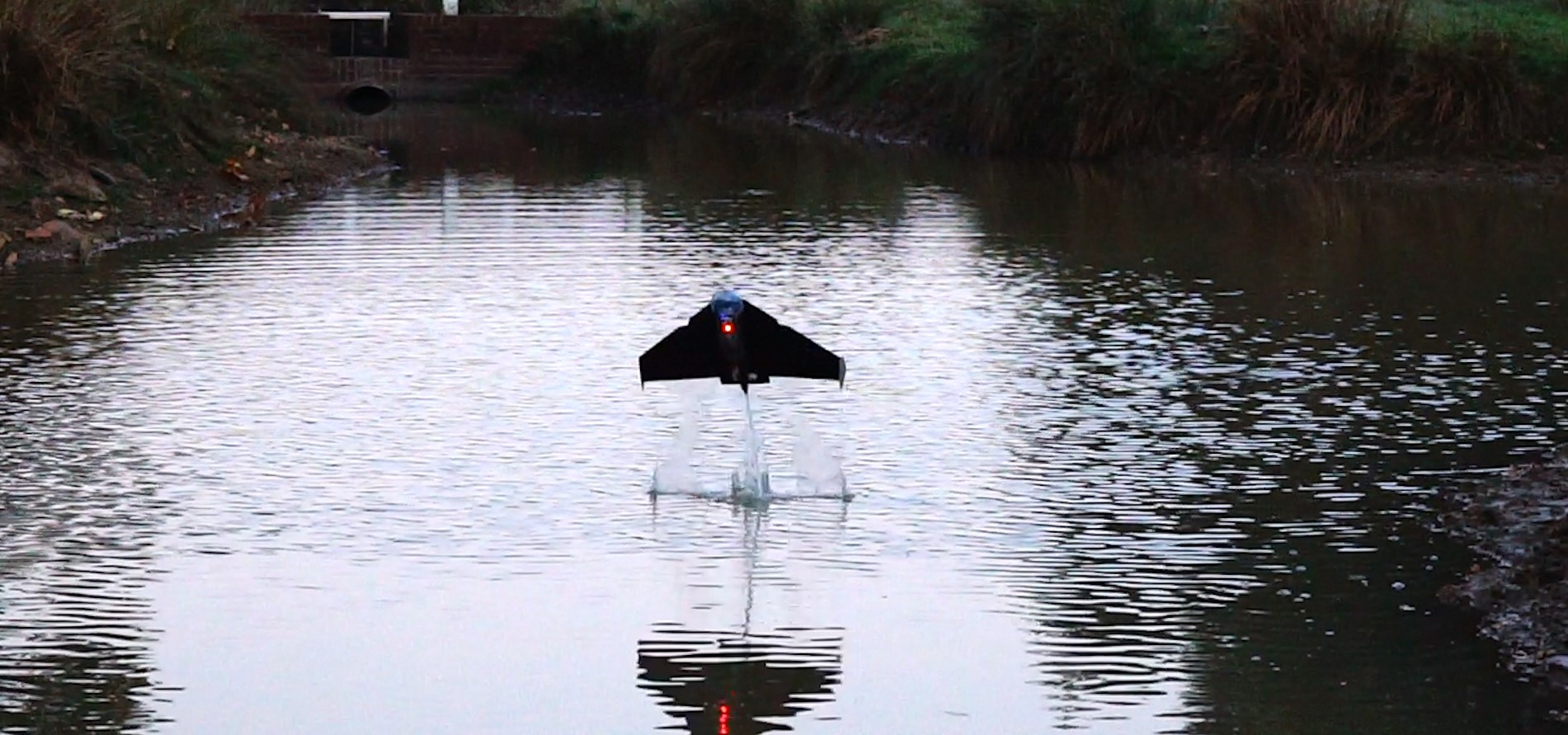 """""""Flying fish"""" robot uses surrounding water for flight fuel"""