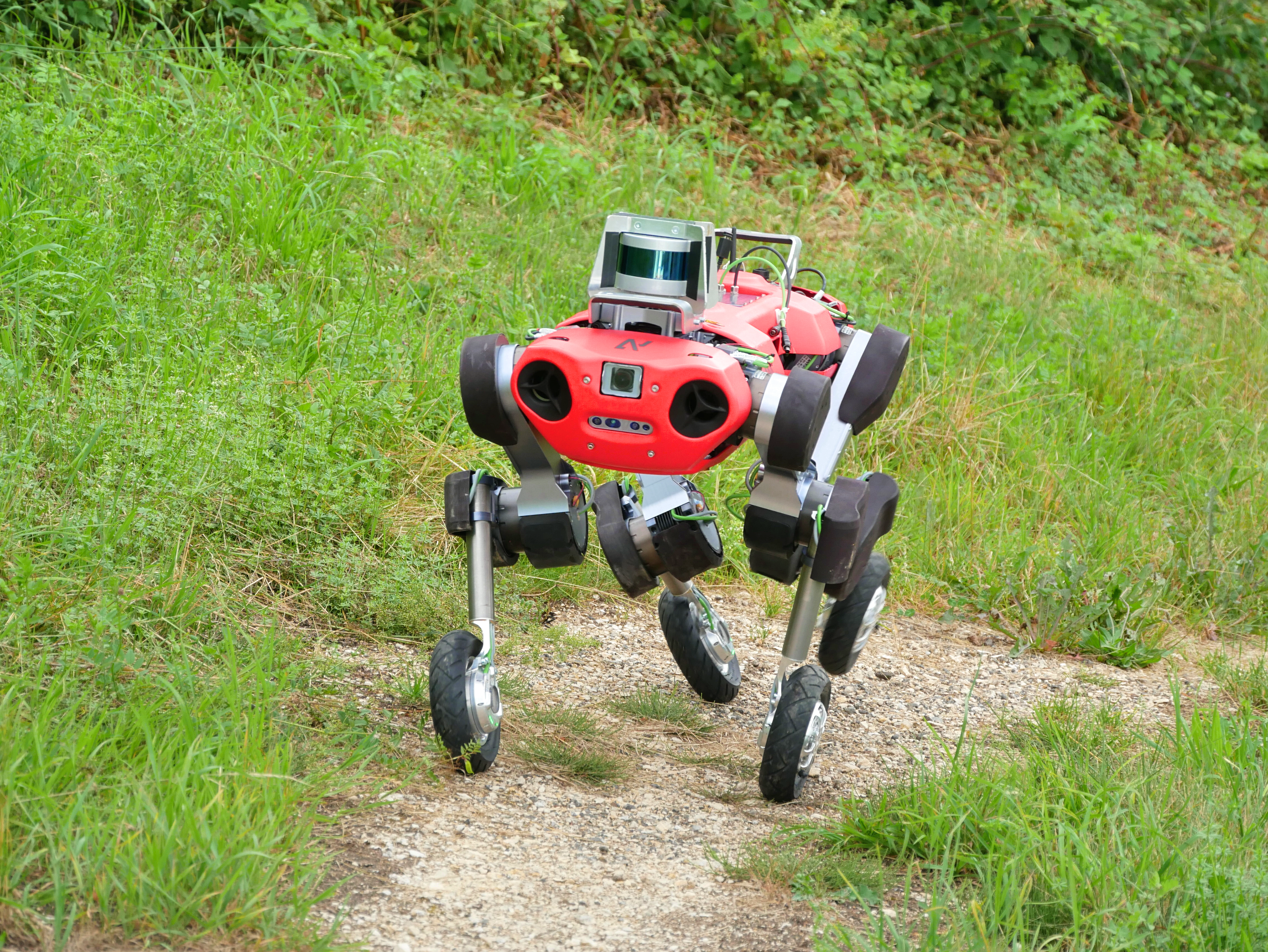 This experimental version of the ANYmal robot has both legs and wheels