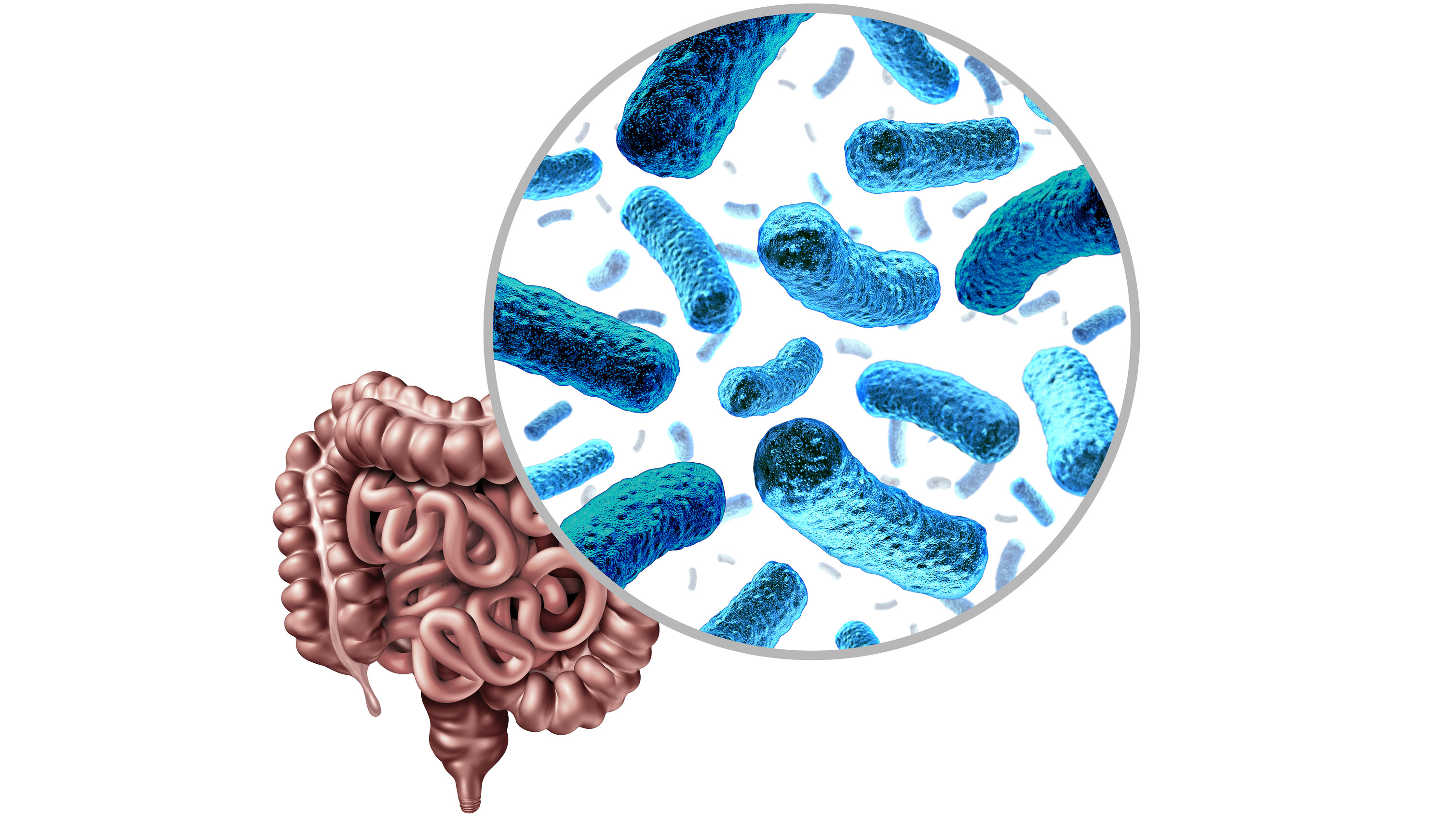 Researchers propose new way to remodel gut microbiome