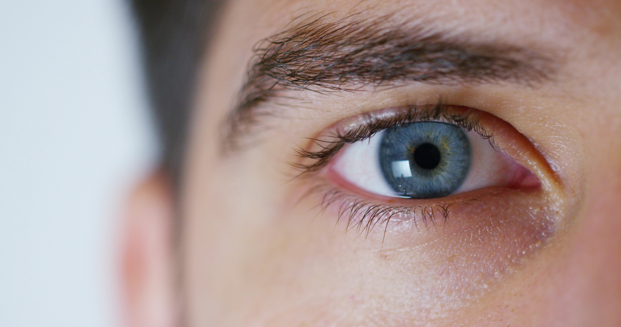 Using a light-sensing protein found in glowing algae, scientists have shown how vision can be partially restored in a patient suffering from common vision loss