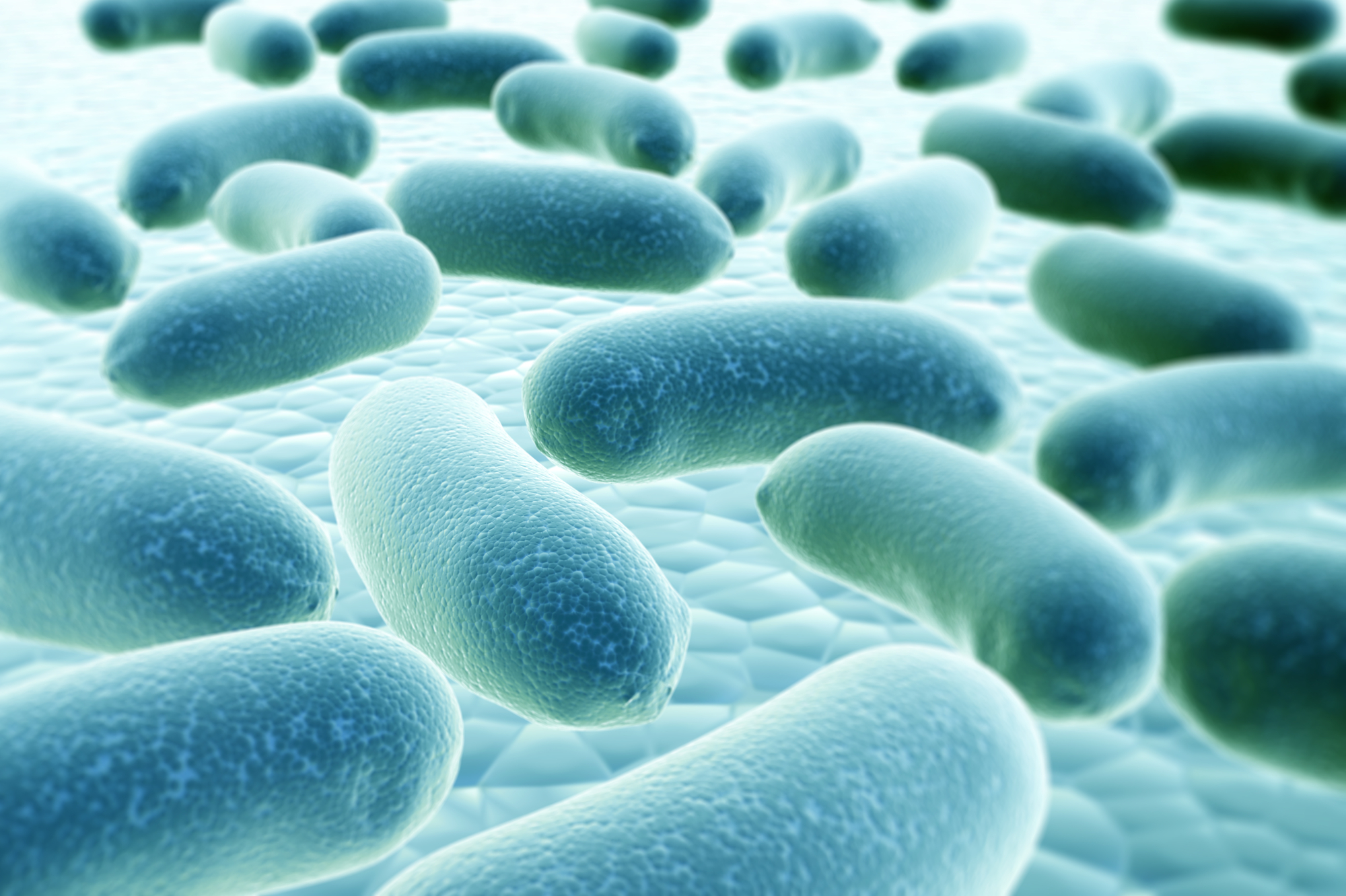 Peptides in your skin could be key to fighting superbugs