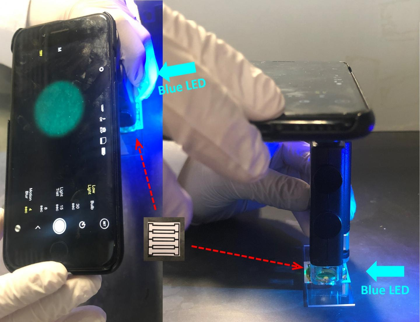 Simple smartphone-based system detects norovirus