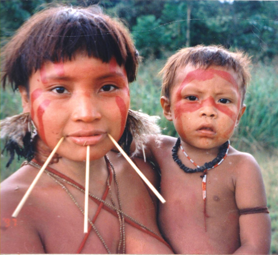 Isolated Amazon tribes reveal clue to source of high blood pressure in the West