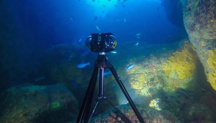 Boxfish reels in a high res, 360-degree underwater video camera