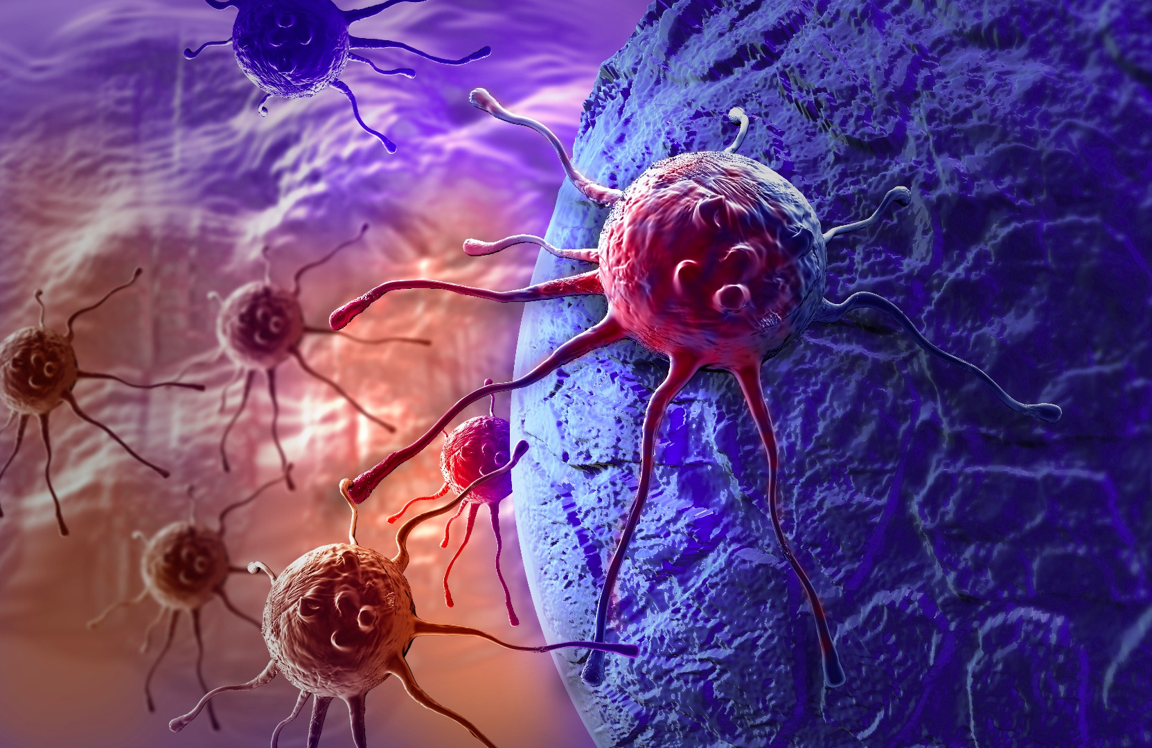 Stem cells beat the clock for brain cancer