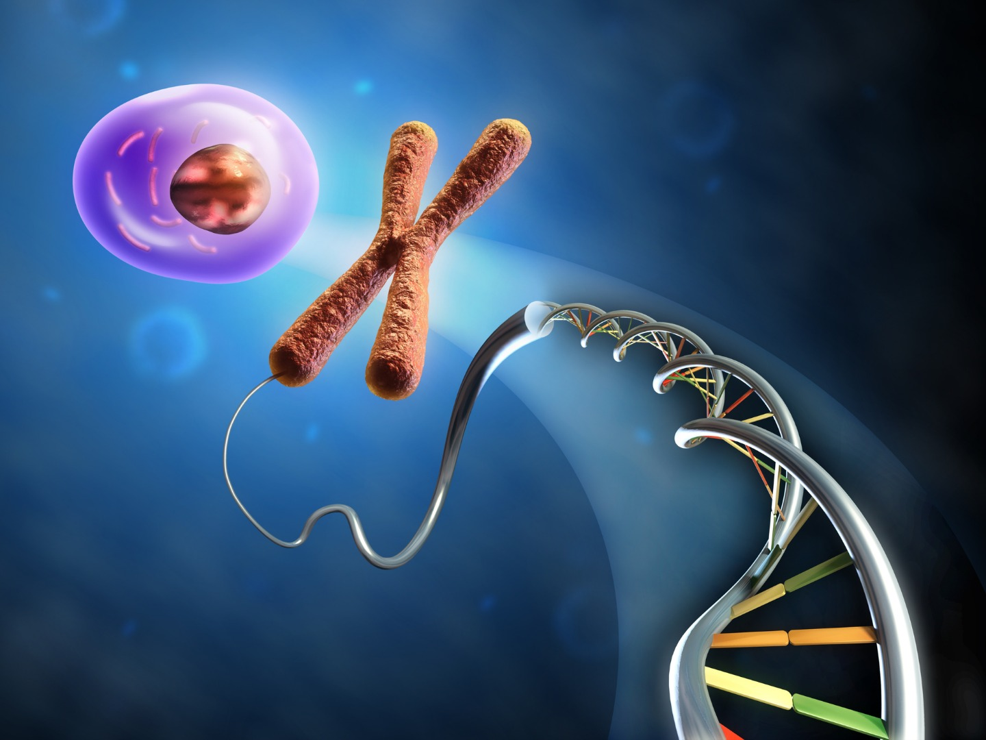 Epigenetic inheritance, and how the way you live your life could affect your offspring