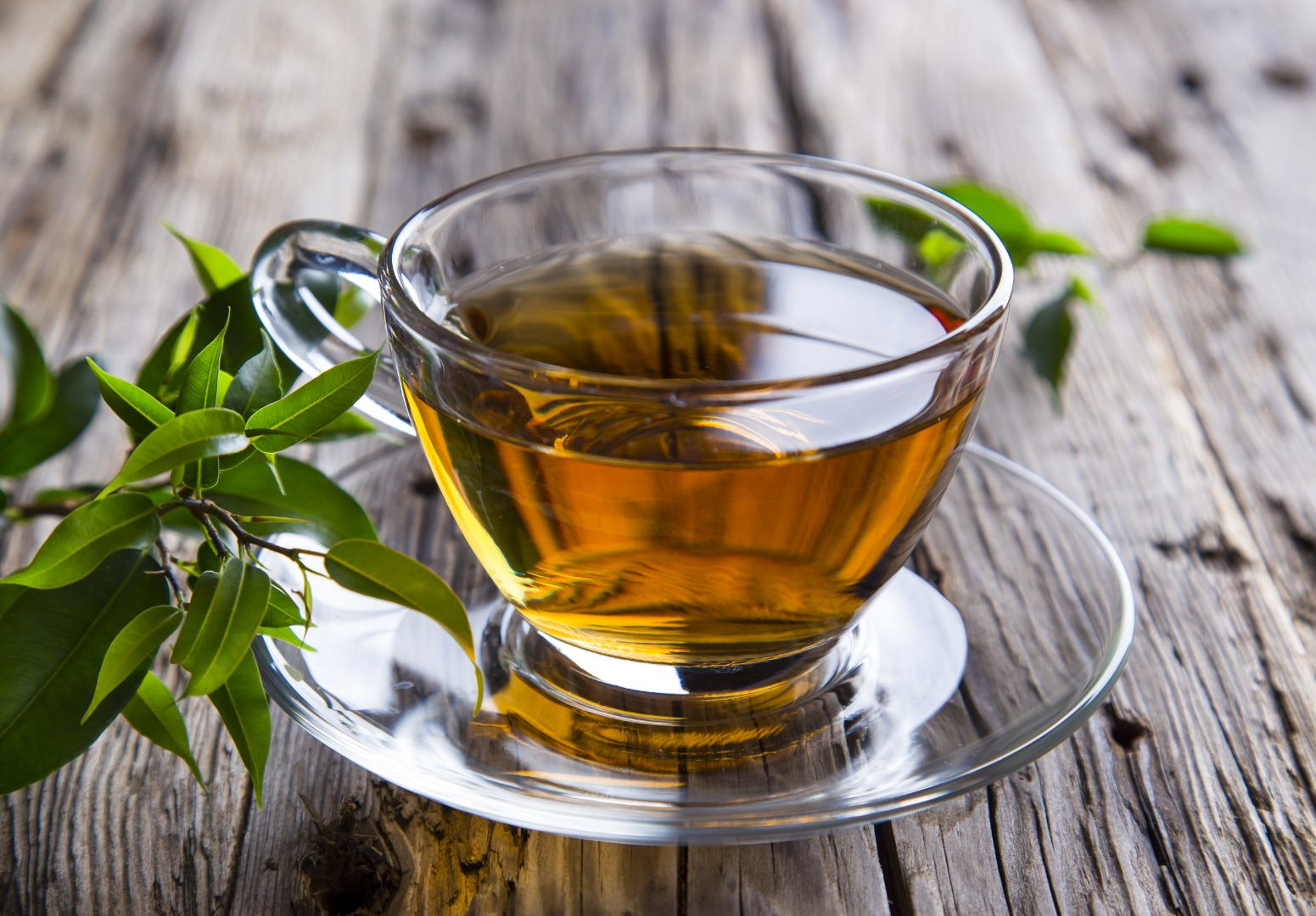 Green tea and carrot compounds found to reverse Alzheimer's symptoms in mice