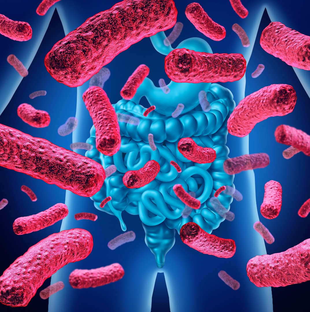 Exciting insight into role gut bacteria play in obesity-related depression and anxiety
