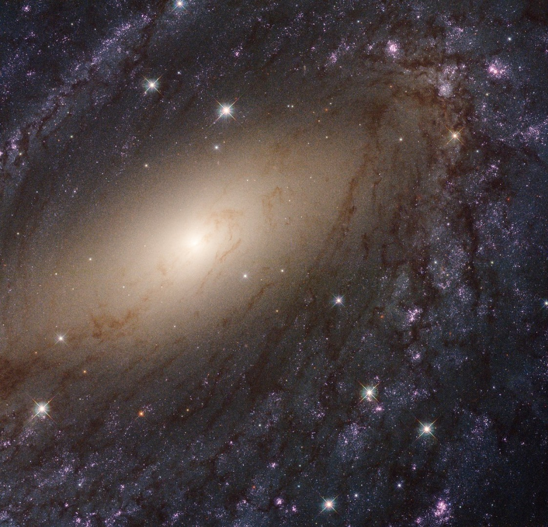Hubble reveals the local universe in glorious ultraviolet detail
