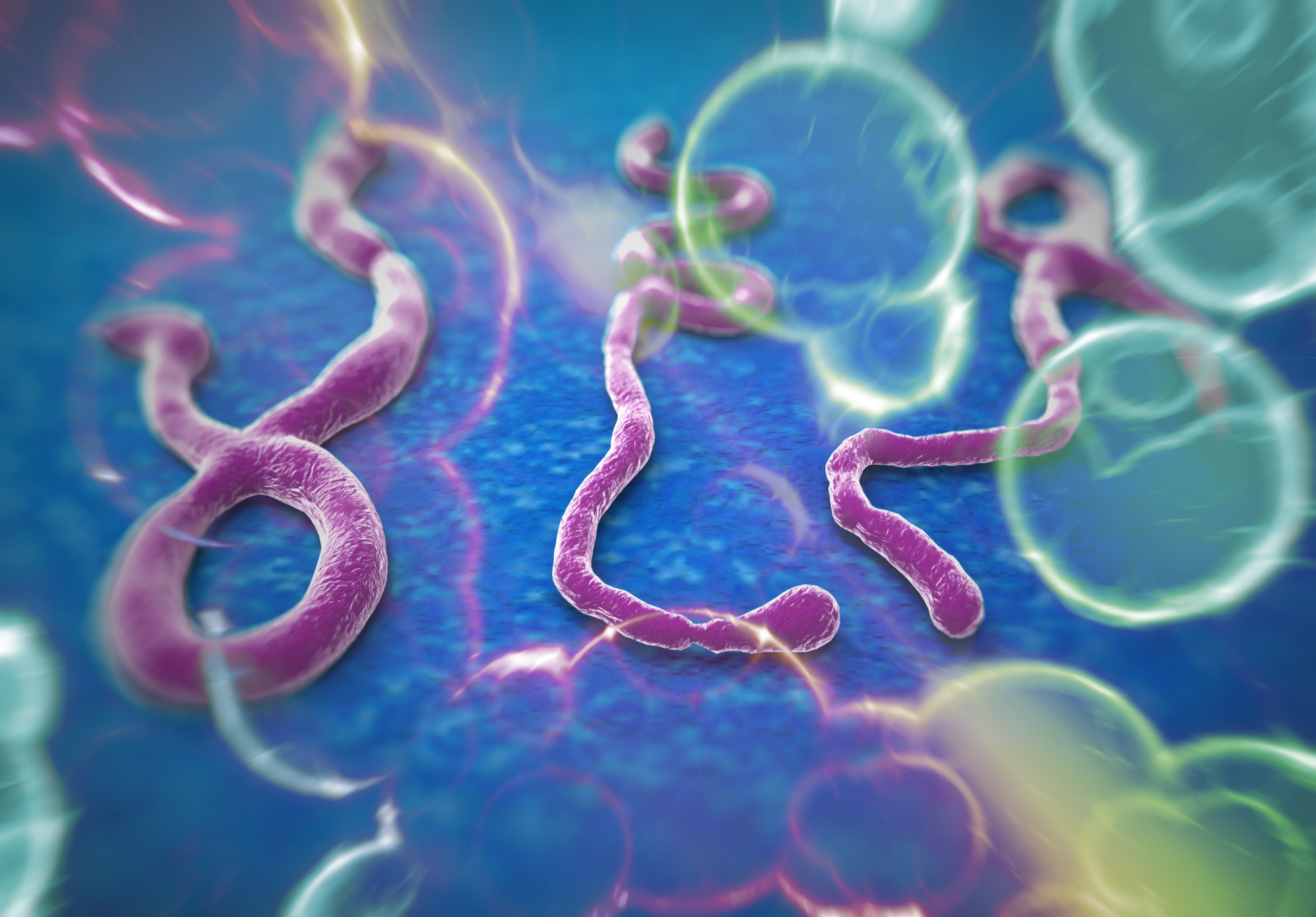 The Ebola virus has emerged as an unlikely potential ally in the fight against deadly brain cancer