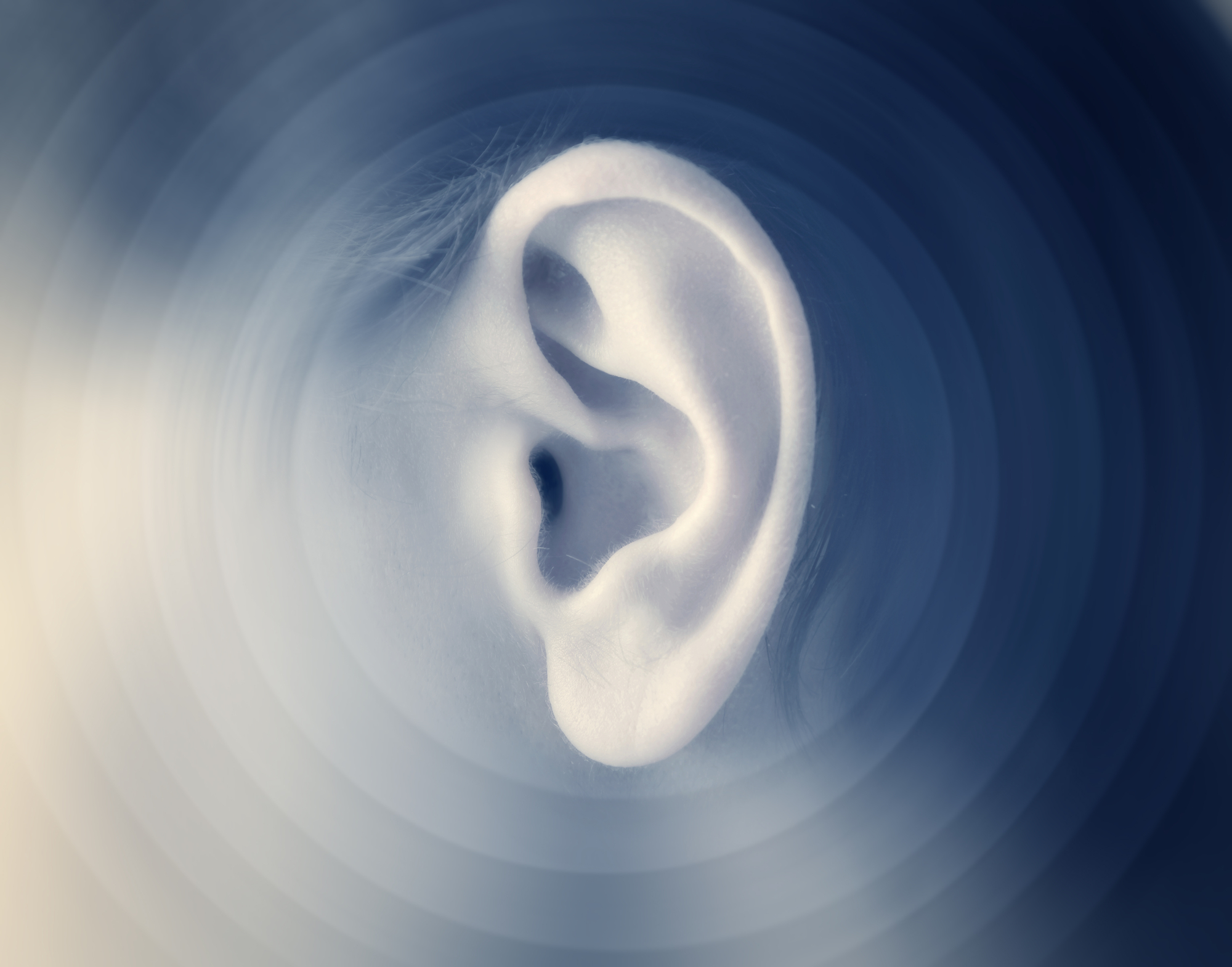 Scientists have made a discovery could one day lead to regenerative treatments for hearing loss