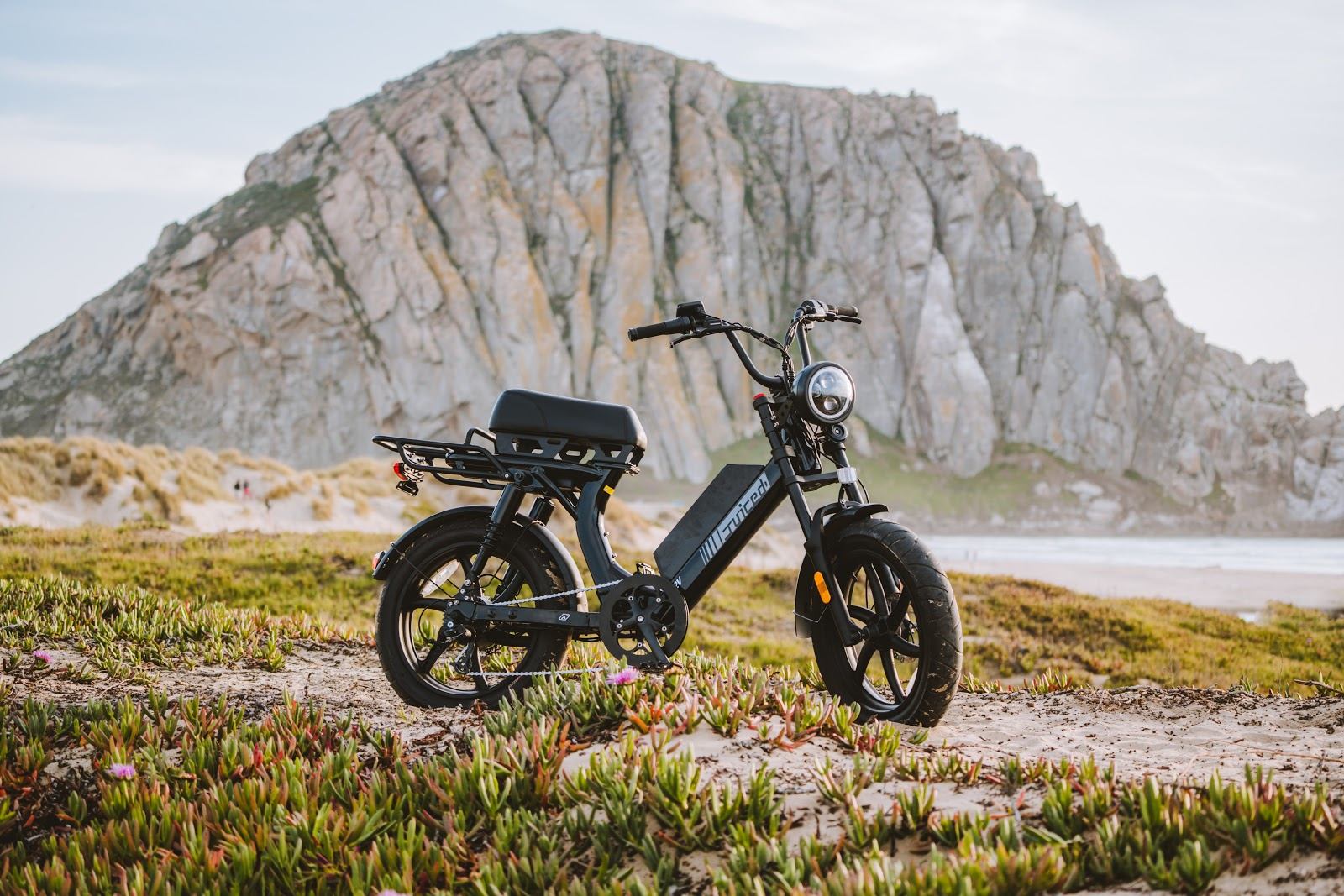 A capable cargo hauler for the city, or powerful off-road adventure ebike