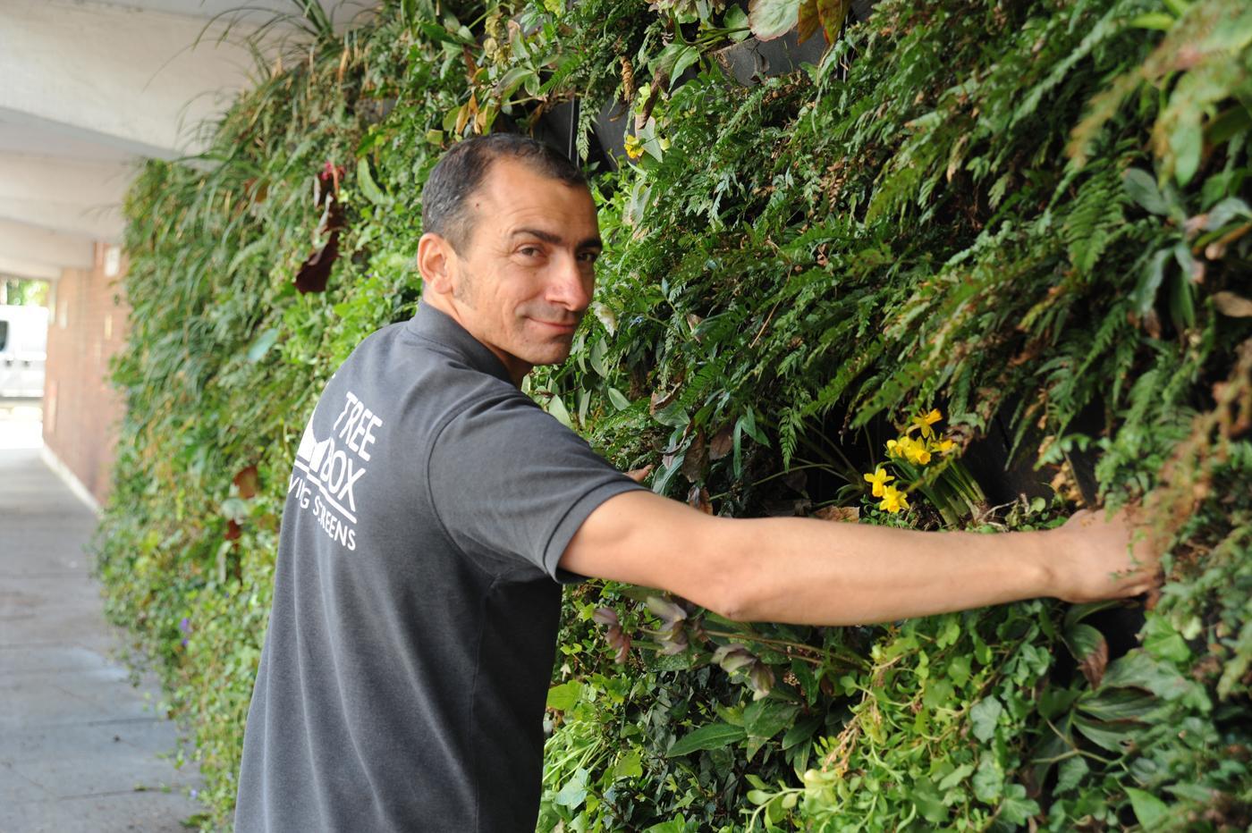 The Rain Garden was installed by urban greening firm Treebox