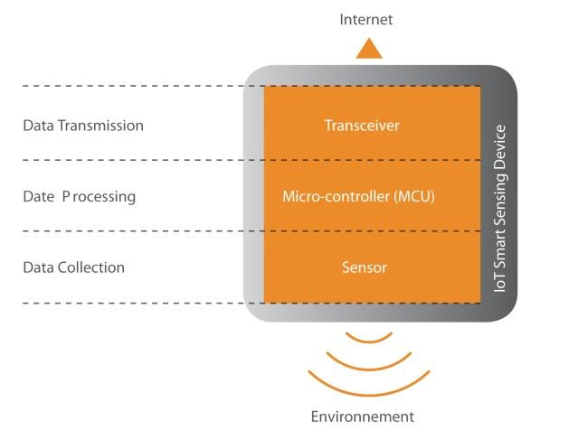The Fundamental Components of the IoT-Enabled Smart Sensing Device