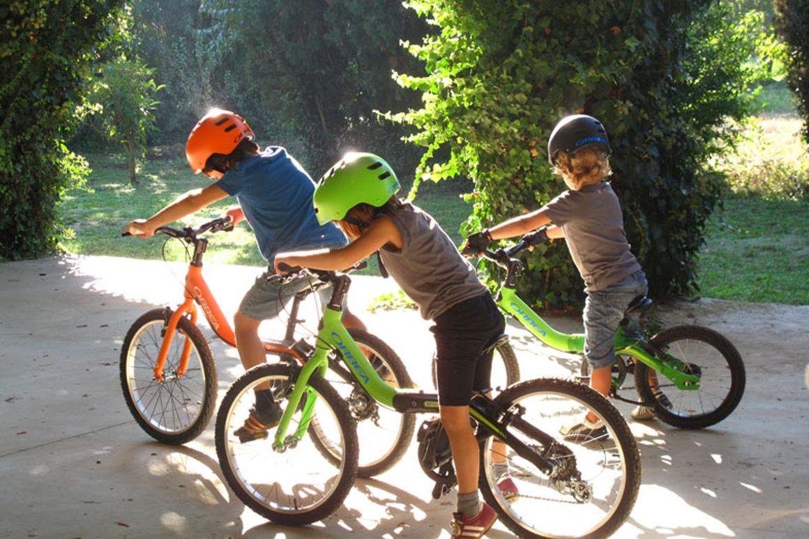 Grow bikes feature an adjustable frame to allow them to grow along with the child