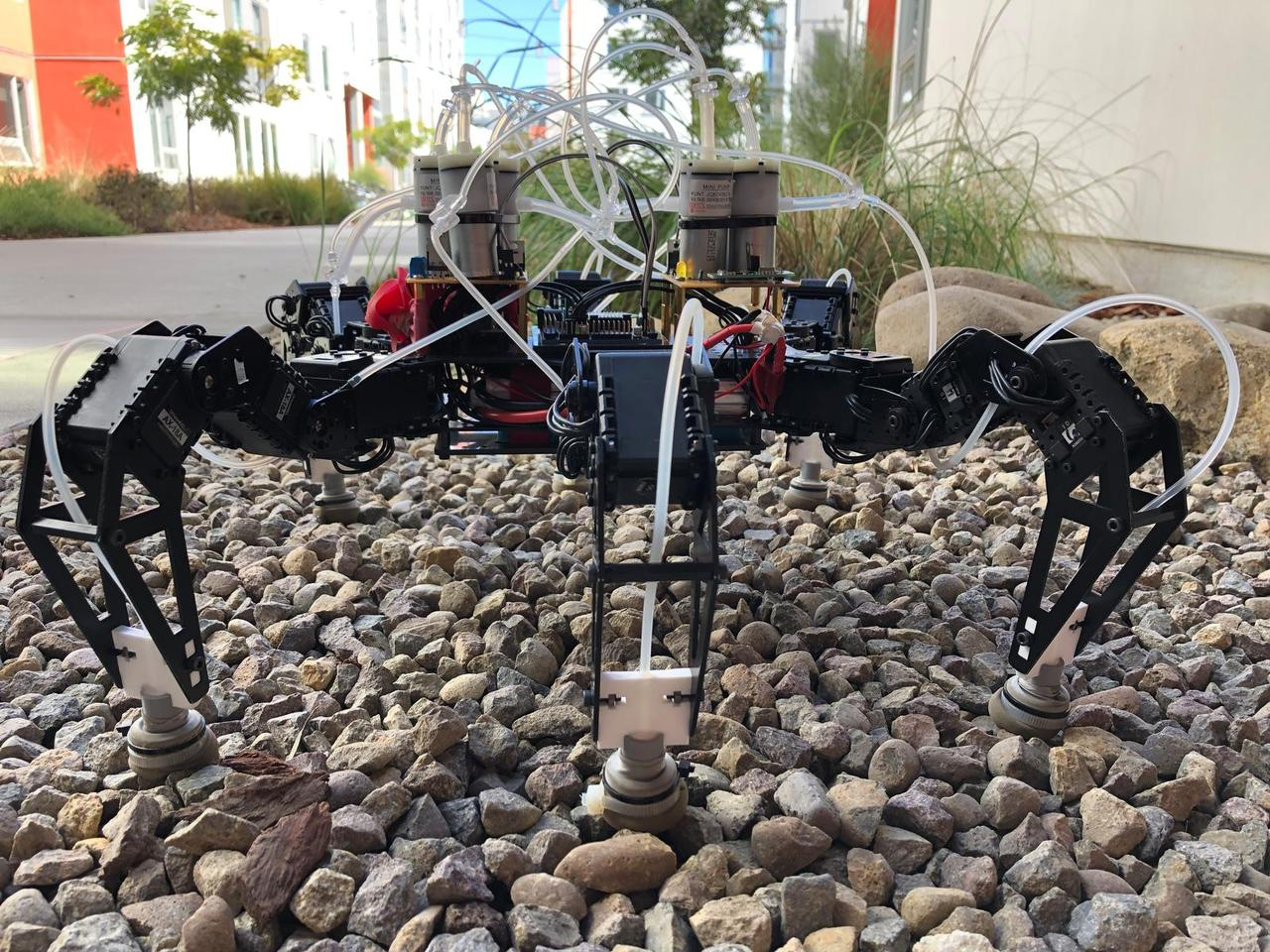 The feet have been tested on a commercially available hexapod robot