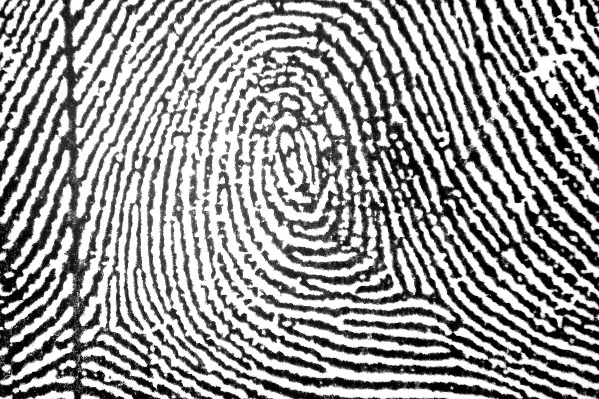 The new algorithm helps read smudged or incomplete fingerprints