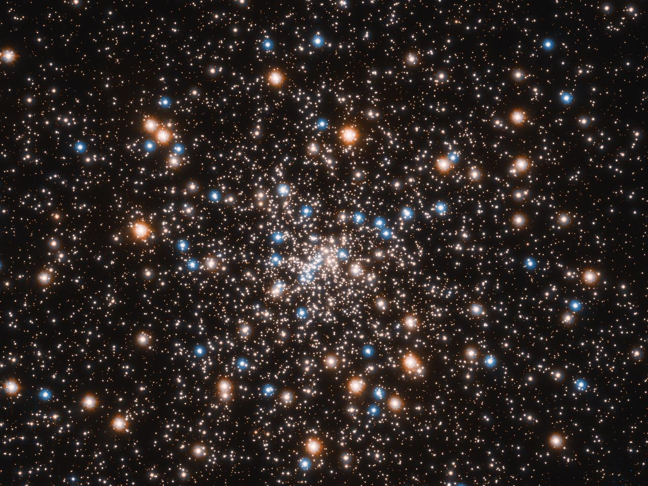 Globular cluster NGC 6397, where Hubble has now found evidence for a swarm of small black holes