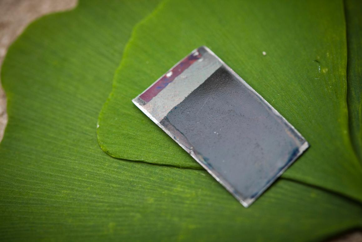 """The """"artificial leaf"""" created by Daniel G. Nocera, Ph.D. and his team now has self-healing capabilities (Photo: Dominick Reuter)"""