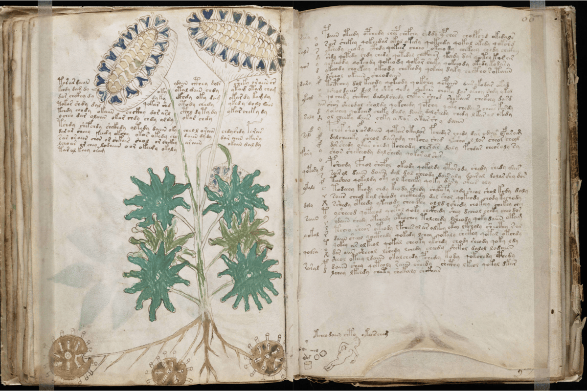 The Voynich manuscript has been carbon dated to the middle of the Fifteenth Century