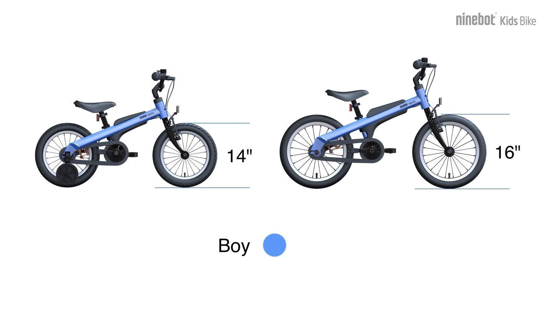 Ninebot Kids Bike for boys