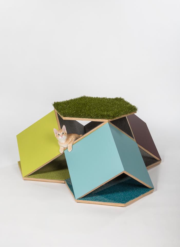 The CatCube: Meowdular Dwelling Unit, by Abramson Architects