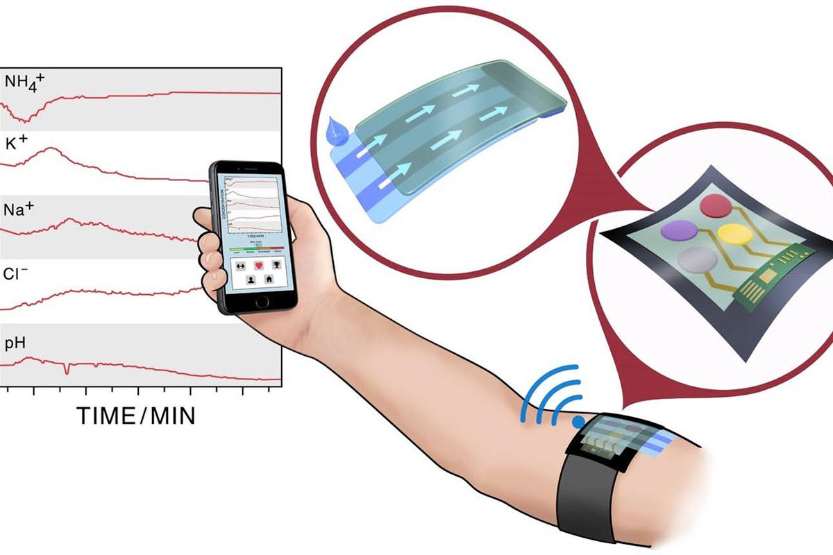 In this scenario, an armband measures blood and sweat and sends the information to a smartphone app