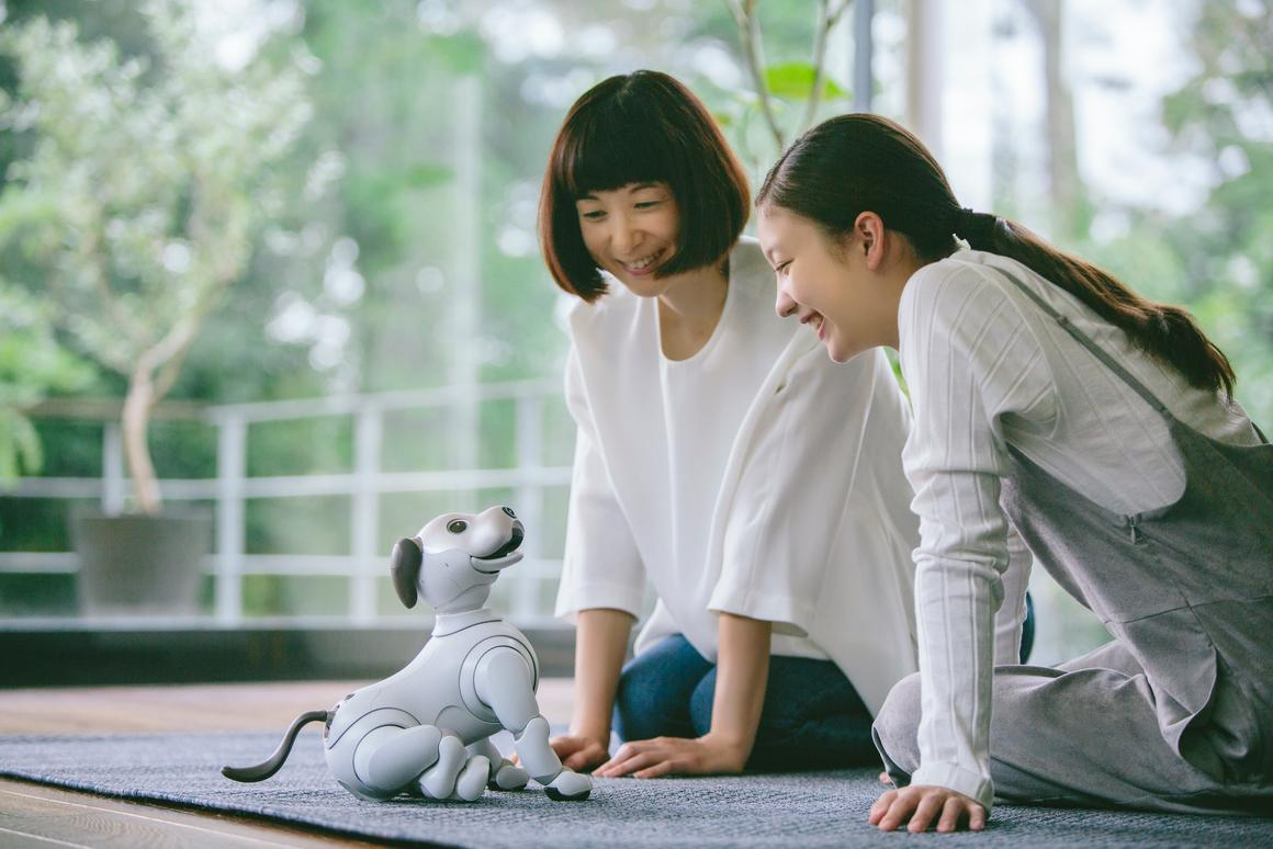 Originally a Japan-only release, aibo will be available in the US as a limited edition bundle from September, 2018