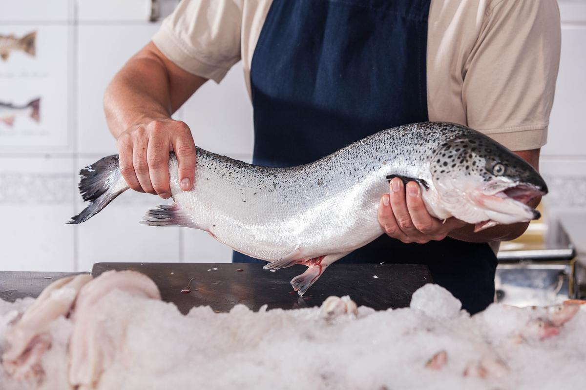 New low-temperature processes extract more products from salmon leftovers