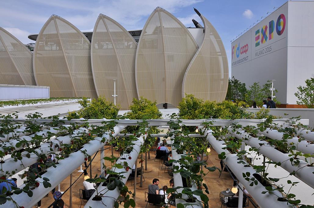 The Spanish Pavilion features a hydroponic strawberry farm