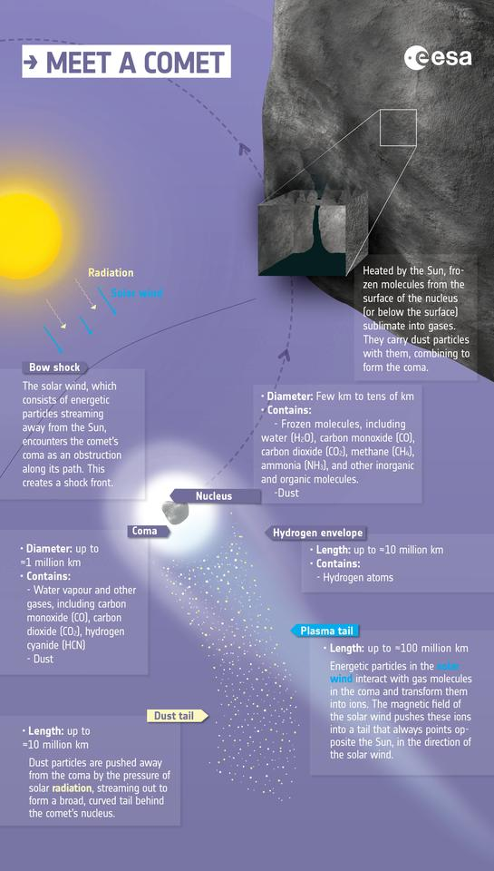 An ESA graphic showing some of the key elements of a comet