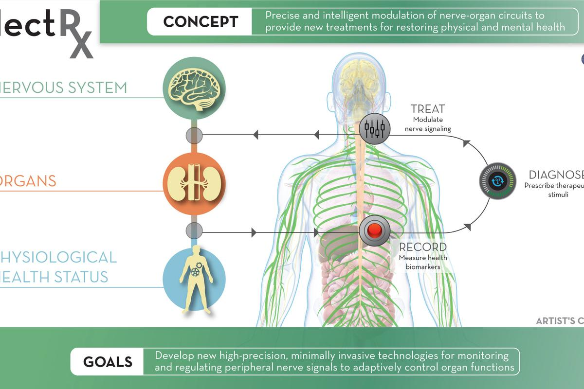 DARPA's ElectRx program (Electric Prescriptions) is funding research into tiny embedded devices that can monitor conditions inside the body and stimulate particular nerves in response, enhancing the body's self-healing abilities.