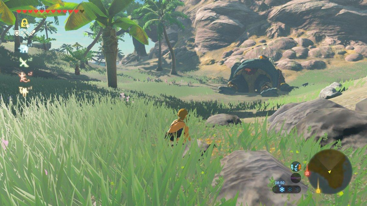 How to beat Eventide Island in Breath of the Wild