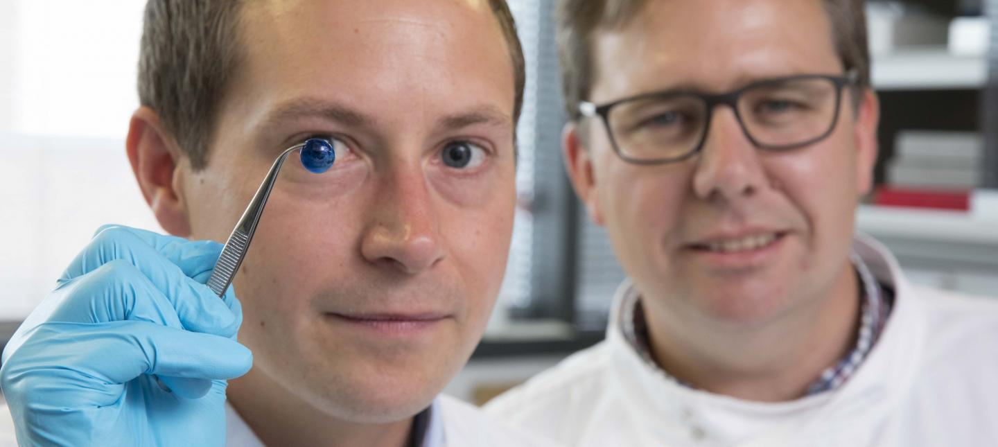 Co-author Dr. Steve Swioklo (left) and Prof. Che Connon, with a 3D-printed cornea