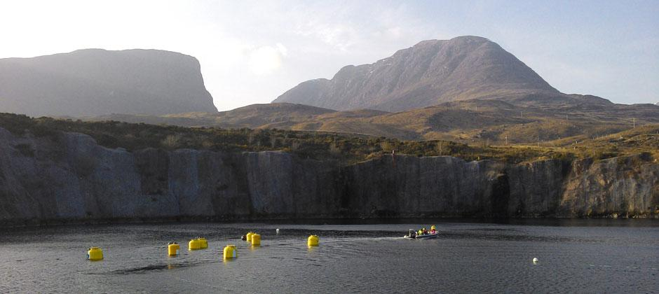WaveNET Squid test units floating in calm seas
