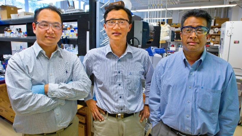 Left to right, Byung Yang Lee, Seung-Wuk Lee, and Ramamoorthy Ramesh are among the scientists behind the research (Photo: Lawrence Berkeley National Laboratory)