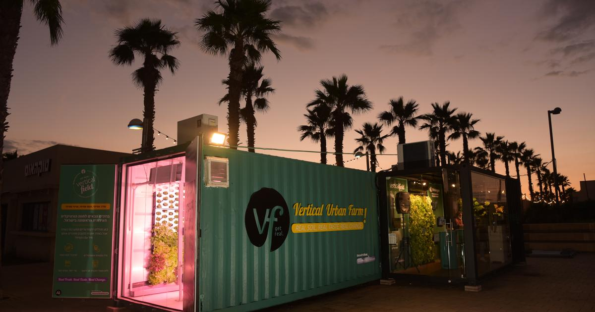 Vertical farms grow veggies on site at restaurants and grocery stores
