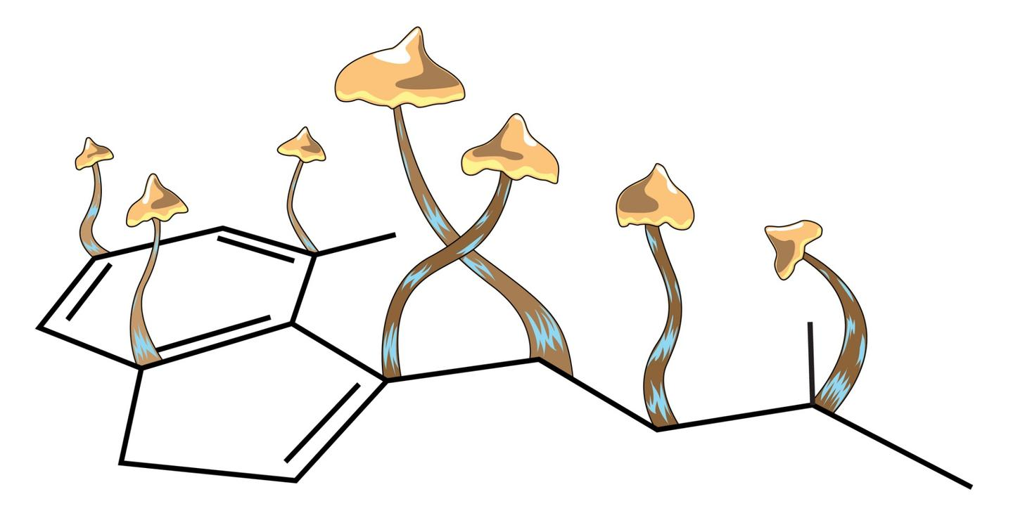 Granting of Breakthrough Therapy status allows the FDA to expedite research and review of psilocybin-based treatments to move them into clinical use sooner