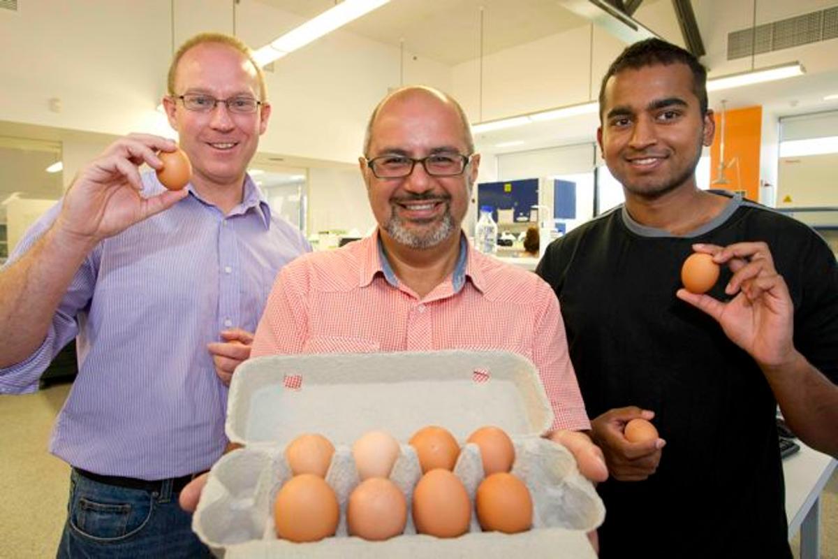 The hypoallergenic egg team: Tim Doran (left), Cenk Suphioglu and Pathum Dhanapala