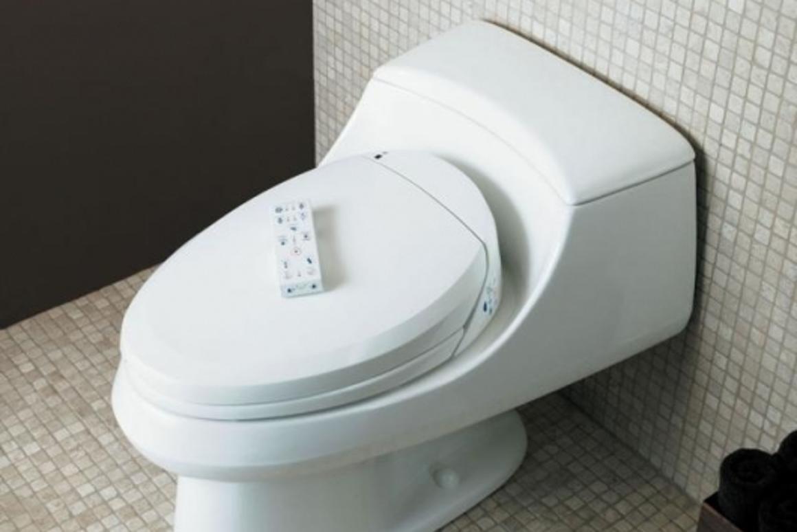 Magnificent The Kohler C3 Toilet Seat With Remote Control Inzonedesignstudio Interior Chair Design Inzonedesignstudiocom