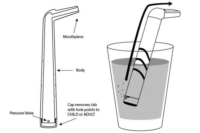 A diagram of the FISST device