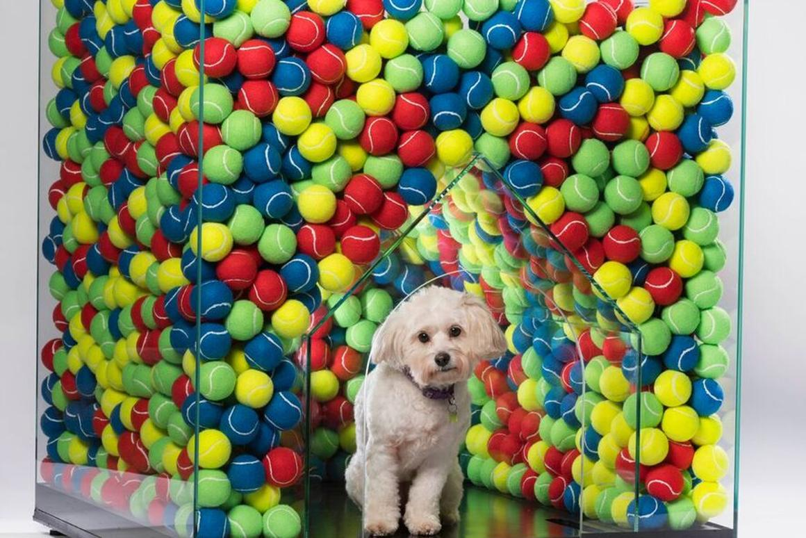 TheDW Kennel was designed byDenizen works, Cantifix and Arrant Land. Itholds 2,000 tennis balls to ensure the dog never runs out of balls to play with
