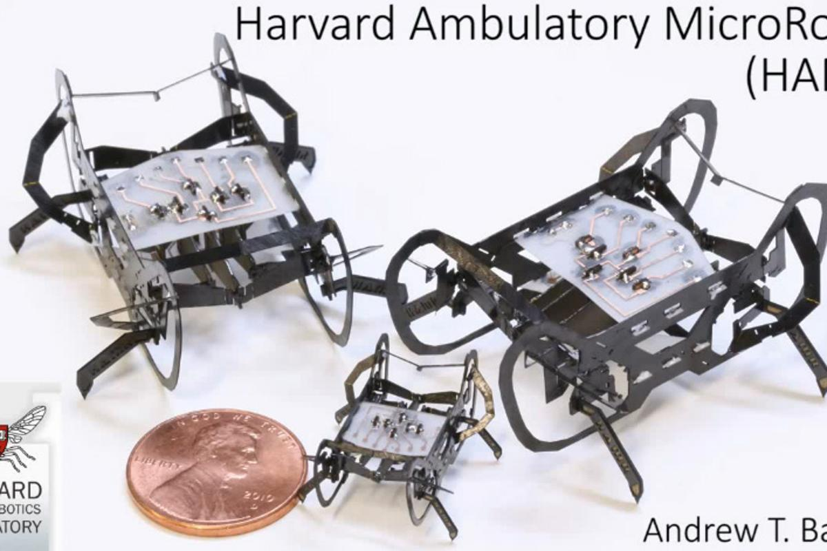 Harvard Microrobotics Lab's HAMR is an insect-sized robot capable of high speed legged locomotion