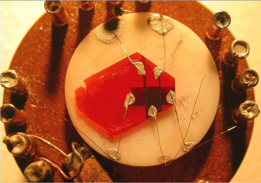 An organic single-crystal transistor made out of rubrene (red crystal) (Image: Rutgers University)