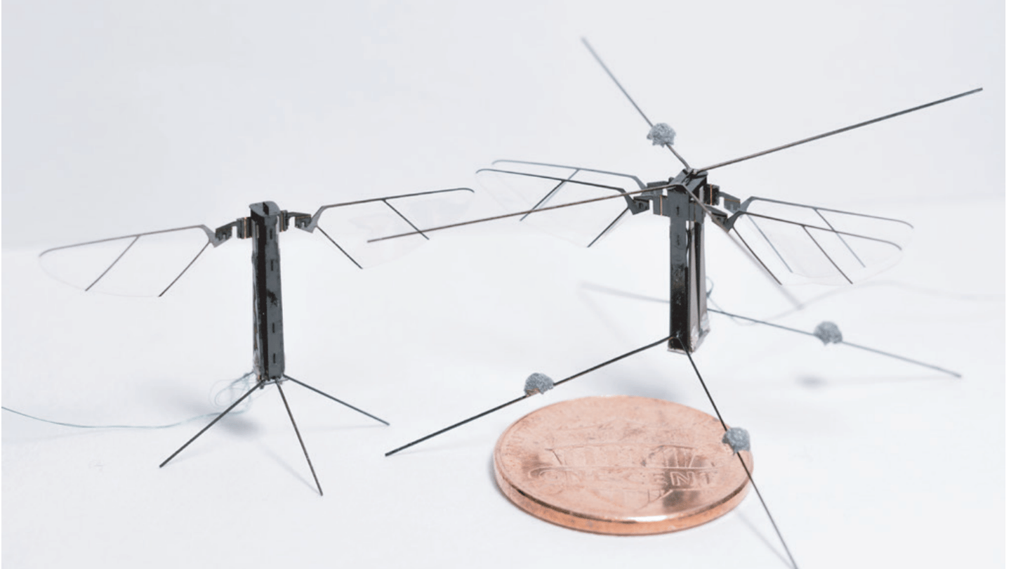 The four-wingedBee+ (on right)next to a two-winged model