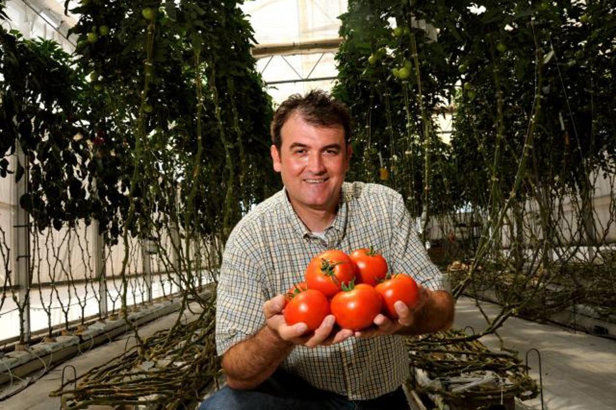 Murat Kacira at the Controlled Environment Agriculture Center (Image: Norma Jean Gargasz / UANews)