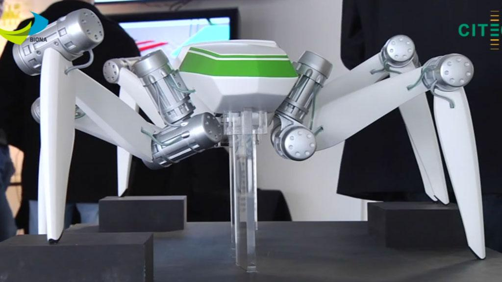 HECTOR, the Hexapod Cognitive autonomously Operating Robot developed at the University of Bielefeld